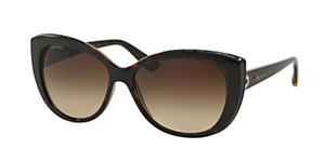 BVLGARI BV8157BQ BVLGARI SIGNS | PARENTESI Sunglasses