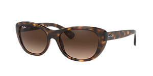 RAY-BAN RB4227 FRAMES OF LIFE Sunglasses