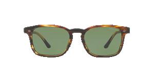 GIORGIO ARMANI AR8103  Sunglasses