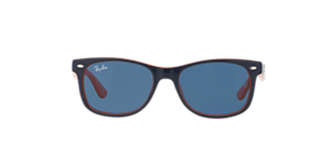 RAY-BAN RB4291  Sunglasses
