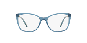 TIFFANY & CO TF2160B  Frames