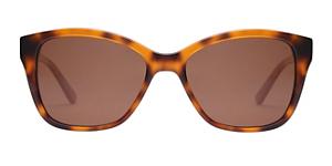 OROTON ORO1803239 GLOUCESTER Sunglasses